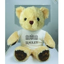 15 inch Chester Bear with T-Shirt - 14702T